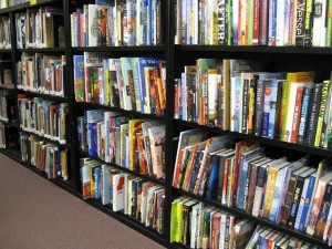 Shelves-Center-for-Childrens-Books