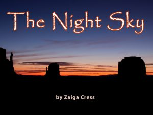 The Night Sky 2014_cover-2